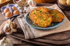 Potato pancakes fried Stock Photography