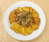 Potato pancakes with mushrooms Stock Image