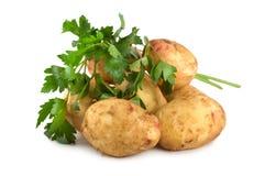 Potato and parsley Royalty Free Stock Photos