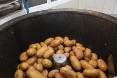 Potato peeling machine. Stock Photo