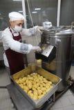 Potato peeling machine. Royalty Free Stock Photo