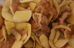 Potato peelings. The texture of potato peelings of different shapes stock image