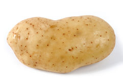 Potato photographed individually Royalty Free Stock Image