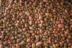 Potato pile Stock Image