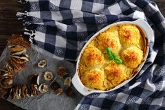 Tasty baked polpette stuffed with ceps Stock Images