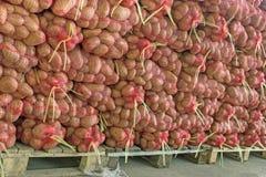 Potato potato-sack Stock Images