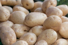 Potato. Es sold in the market Royalty Free Stock Image