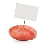 Potato with price tag isolated Royalty Free Stock Photo