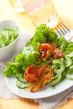 Potato rosti and cucumber salad. Potato rosti with salmon and cucumber salad Royalty Free Stock Image