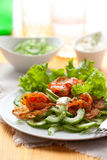 Potato rosti with  salmon. And cucumber salad Royalty Free Stock Image
