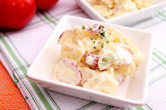 Free Potato Salad Stock Image - 18178271