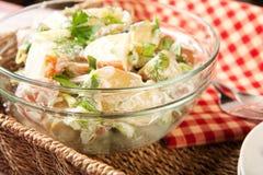 Potato Salad. Herb potato salad in picnic setting stock photos