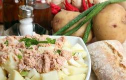 Potato salad Royalty Free Stock Image