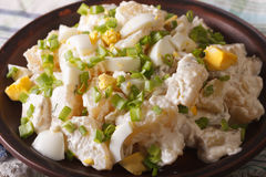 Potato salad with chives and egg close-up on a plate. horizontal Royalty Free Stock Images