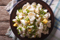 Potato salad with chives and egg closeup. Horizontal top view Stock Images