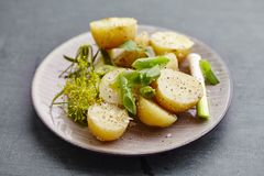 Potato salad. With dild,spring oniens, olive oil, salt and pepper royalty free stock photography