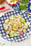 Potato salad with fresh cucumber Royalty Free Stock Image