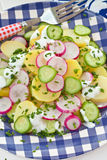Potato salad with fresh cucumber Stock Images
