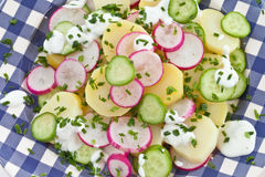 Potato salad with fresh cucumber Stock Photo