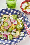Potato salad with fresh cucumber Royalty Free Stock Photos