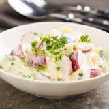 Potato salad. Fresh potato salad with radish and cucumber Royalty Free Stock Images