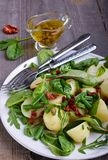 Potato salad with green beans and sun-dried tomatoes. In plate Stock Photos