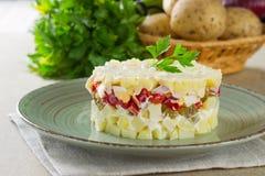 Potato salad. Homemade potato salad with onion, egg, paprika, pickles stock photography