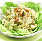 Potato salad with letuce served in a bowl Stock Photography
