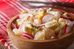 Potato salad with radish and eggs macro on a plate. Horizontal Stock Image