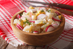 Potato salad with radish and mayonnaise in a bowl close-up Stock Image