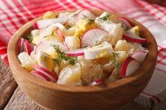 Potato salad with radish and mayonnaise close-up. horizontal Stock Photography