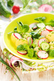 Potato salad with radishes Royalty Free Stock Images