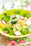 Potato salad with radishes Royalty Free Stock Photos