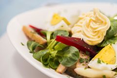 Potato salad with red beet, smoked herring, egg and soy-bean mayonnaise. Close-up photo Stock Images