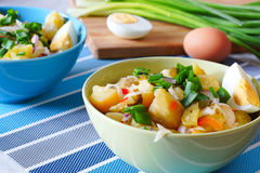 Potato salad rustic. Potato salad in green and blue bowls.the background cutting board, a boiled egg and green onion Royalty Free Stock Photography