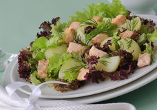 Potato salad with salmon Royalty Free Stock Images