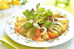 Potato salad with smoked sea bass and salmon Royalty Free Stock Photo