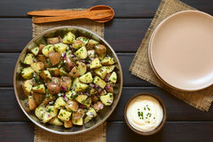 Potato Salad with Sour Cream Stock Images