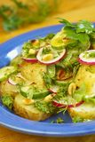 Potato salad with young vegetables Stock Photos