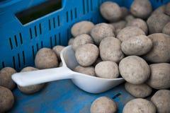 Potato Scooper Royalty Free Stock Images