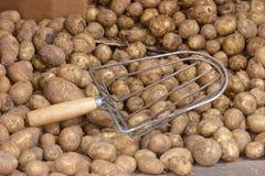 Potato in the shop Stock Photos