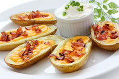 Potato skins , appetizer Royalty Free Stock Photography