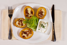 Potato Skins Appetizer on Plate Stock Image