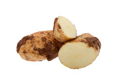 Potato with soil Royalty Free Stock Photo