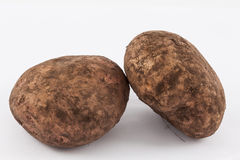 Potato Solanum tuberosum. Isolated in white background Royalty Free Stock Photography