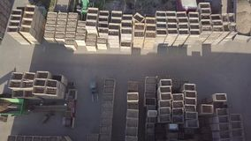 Potato sorting stock video footage
