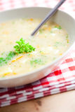 The potato soup. Photo shot of the potato soup royalty free stock photos