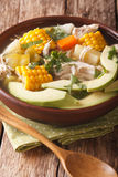 Potato soup ajiaco with chicken close up in a bowl.  Royalty Free Stock Photography