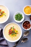 Potato soup with bacon and cheese royalty free stock image