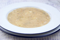 potato soup with some herbs Stock Photography